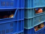 Rosyjskie embargo i odszkodowania dla rolników i plantatorów