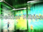 Sektor kibica (c)