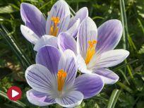 fot. www.shutterstock.com