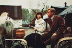 """""""Panny z Wilka"""" to jeden z wielu filmów, w którym Andrzej Wajda obsadził Olbrychskiego w roli głównej  (fot. TVP)"""
