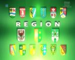 Region (c)