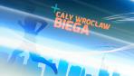 Cały Wrocław biega