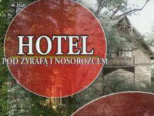 Hotel pod żyrafą i nosorożcem, seriale (fot. TVP)