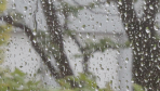Opady deszczu na Podkarpaciu