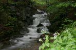 Jeden z wodospadów za kamieniołomem w Brzegach Górnych (2)