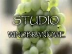 Studio winobraniowe (c)