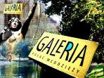 Galeria (c)