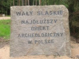 Fot. Towarzystwo Bory Dolnośląskie